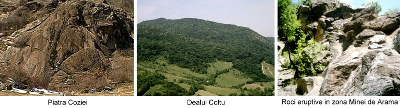 dealul coltu